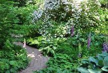 A I Garden mood board / Ideas & inspiration for an informal family garden