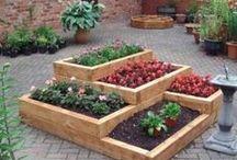 Productive Gardens / Including edibles in the garden