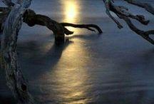 MOONLIGHT Moon Bright