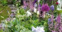 JP garden mood board East Keswick / Illustrations and ideas for a family garden in E Keswick