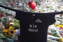 MH17 | Air disasters