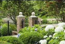 SWH - Kingston Pike / Works from Stephen W. Hackney Landscape Architecture.