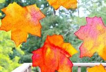 Awesome Autumn / It's Autumn! Time to celebrate! / by Emma @ Our Whimsical Days