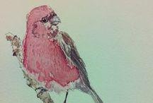 Yoga Finch