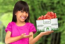 Grow kits for healthy eating / Watch what you eat ™! Grow your own mushrooms, herbs, salads and edible flowers with this selection of Grow It Yourself kits. Claim back what you eat: watch your food grow!