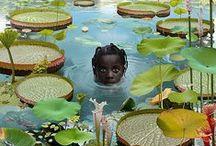 Ruud van Empel / Dutch photographer and visual artist.
