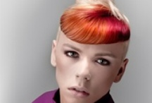 Color Zoom '12 - FasciNature / Partners Hairstyling Collections