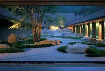 Outdoor  / Garden design