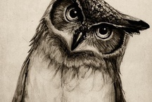 OoOwl-some! <3