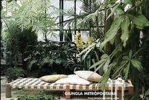 Tuine / Dream gardens