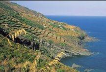 Isola di Pantelleria / La perla nera del Mediterraneo || The black pearl of the Mediterranean