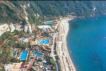 Parchi termali Ischia