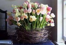 Spring/Easter inspiration / Jarní dekorace