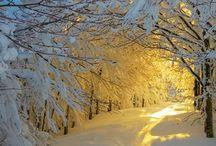 Winter / No comm...