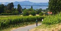 Radtouren / Ob mit dem Mountainbike, dem Trekkingrad oder dem herkömmlichen Drahtesel – Radfahren gehört zu den beliebtesten Freizeitaktivitäten in Deutschland. Zahlreiche Radwege schlängeln sich quer durch die Republik und bieten Entspannung, Spaß und Abenteuer für Genussradler, Familien und Downhill-Begeisterte. Folgen Sie unseren Tipps für Ihre Freizeit und entdecken Sie jetzt die schönsten Radrouten Deutschlands!