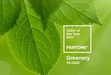 STYLE - Pantone Colour Of The Year 2017!! / Pantone recently announced their colour of the year for 2017!A refreshing and revitalising shade, Greenery is symbolic of new beginnings. Greenery is a fresh and zesty yellow-green shade that evokes the first days of spring when nature's greens revive, restore and renew. Illustrative of flourishing foliage and the lushness of the great outdoors, the fortifying attributes of Greenery signals consumers to take a deep breath, oxygenate and reinvigorate. What do you think? http://soak.com/