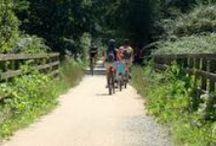 VIAS VERDES - GREEN WAYS / Vias verdes de Palafrugell (Calella-Llafranc-Tamariu)