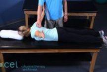 Scapula Stabilisation Exercises  / Basic scapula exercises using dumbbells, Theraband or body weight for improved scapula control and dynamics.
