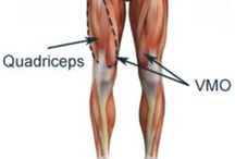 Knee Strengtheing Exercises / Knee strengthening exercises from isometrics, to VMO targeted exercises and onto more challenging single leg squat variations.