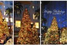 Holidays in the OC / Fun things to see and do this holiday season in Orange County.