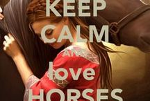 Horse riding tips