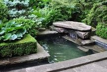 My Dream House: The Water Garden