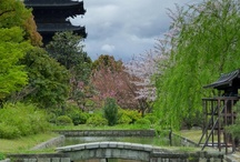 Japan beautiful / dream place to definitely visit!!!