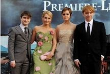 Harry Potter fanatic