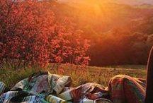 autumn / Ősz és herbst...