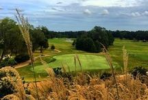 Golf / by Visit Mississippi