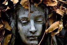Dead leaves / #leaves #deadleaves #autum #october #november #december #brown #green #orange #leaf #fallen #fallenleaf #fallenleaves
