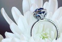 Platinum Jewels / Platinum Jewelry by Erica Courtney