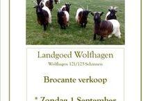 Brocante .....en meer / www.landgoedwolfhagen.nl