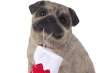 Sandicast Christmas Dog Ornaments