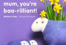 Holidays & Special Events Herdy / Any excuse to celebrate - Herdy does love to dress up & join in the fun.