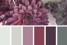Color Scheme - Purple & Grey