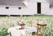 GATHER / gatherings, food, celebration, dinner