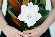 f l o w e r   bouquet