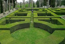 Green / Beautiful greens in fashionable gardens of the finest design. / by James K