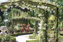 Beatiful Gardens and Amazing Parks - Madrid, Spain / Rose Gardens, Historic Gardens