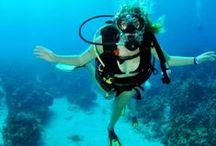 Breathe / Divers