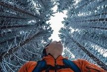Hello, Winter / We welcome winter with open arms! Show us your #GoProSnow content all season long. / by GoPro