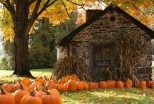 Celebrate - Autumn