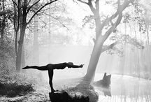 Health, Yoga and Exercise / Health, exercise, food, drinks and positive thoughts. / by Sue Stolnack