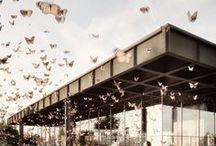 Architecture | render