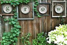 Something green - Ideas for my garden