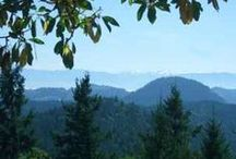 Gowlland Tod Provincial Park / On the Saanich Peninsula hikes, we can access easy or challenging hikes in this amazing park.