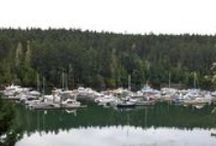 Day 5 - To Sooke Basin / On the route from Metchosin to Sooke, hikers feel a little funny, out in the wilds. Until....