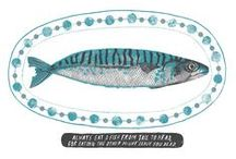 Shell, Fish & the Others / Illustrations coquillages, poissons et autres / by *Rose des Bois*