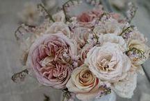 Garten_Blumen / Ideen für den Garten, Natur und dekorieren outdoor
